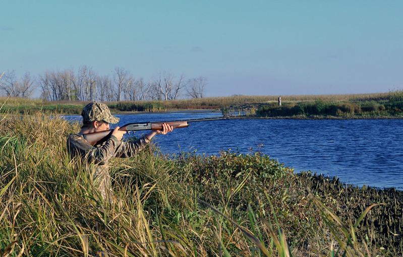 Stagioni di caccia in Ungheria - Caccia Arrabona